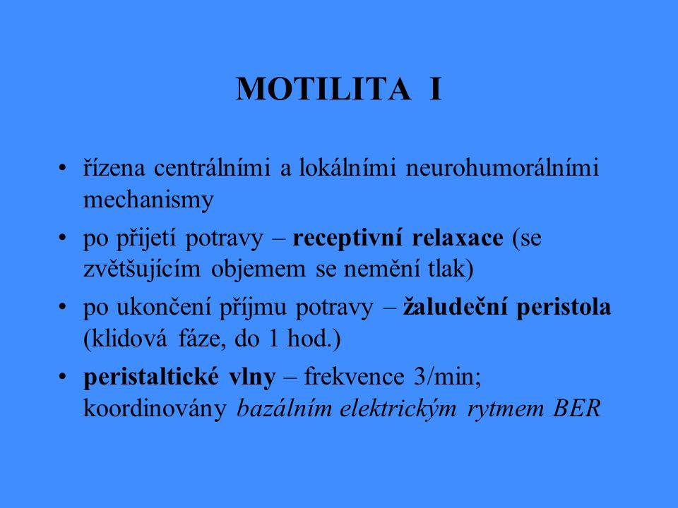 MOTILITA I řízena centrálními a lokálními neurohumorálními mechanismy po přijetí potravy – receptivní relaxace (se zvětšujícím objemem se nemění tlak)