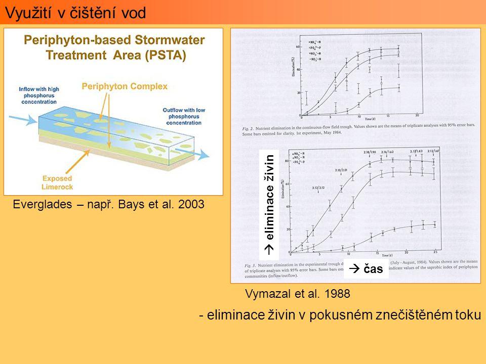 Využití v čištění vod Everglades – např. Bays et al. 2003 Vymazal et al. 1988 - eliminace živin v pokusném znečištěném toku  čas  eliminace živin