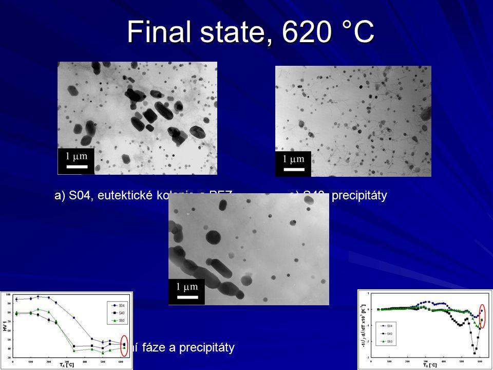 Final state, 620 °C a) S04, eutektické kolonie a PFZe) S40, precipitáty g) S60, primární fáze a precipitáty