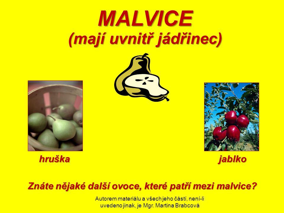 Autorem materiálu a všech jeho částí, není-li uvedeno jinak, je Mgr. Martina Brabcová MALVICE MALVICE (mají uvnitř jádřinec) jablkohruška Znáte nějaké