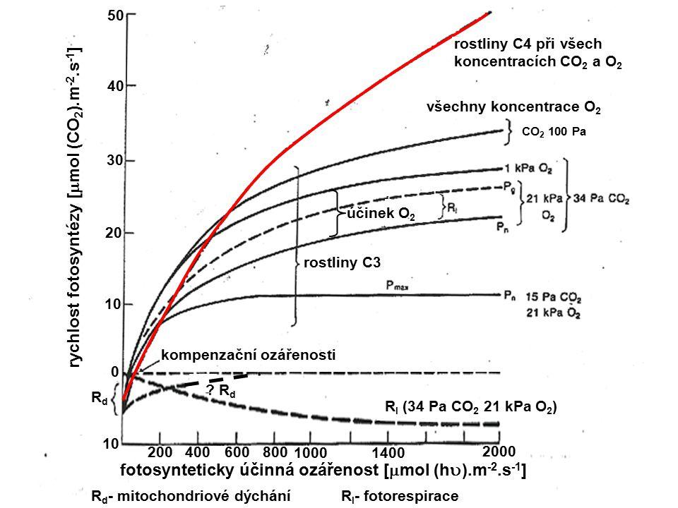 rychlost fotosyntézy [  mol (CO 2 ).m -2.s -1 ] RdRd ? R d R I (34 Pa CO 2 21 kPa O 2 ) rostliny C4 při všech koncentracích CO 2 a O 2 rostliny C3 vš