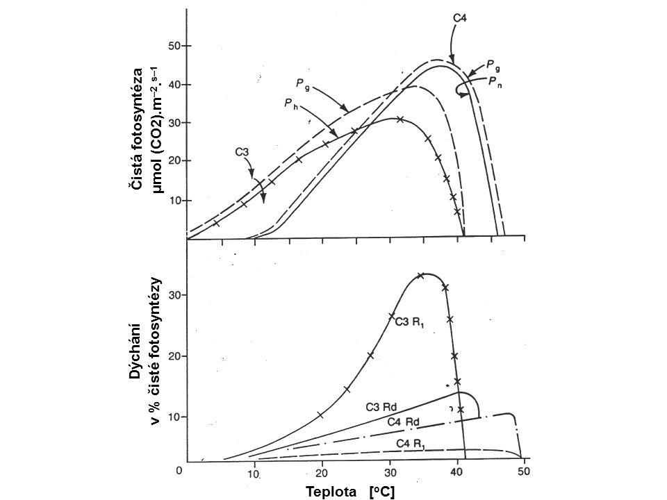 Čistá fotosyntéza μmol (CO2).m –2. s–1 Dýchání v % čisté fotosyntézy Teplota [ o C]