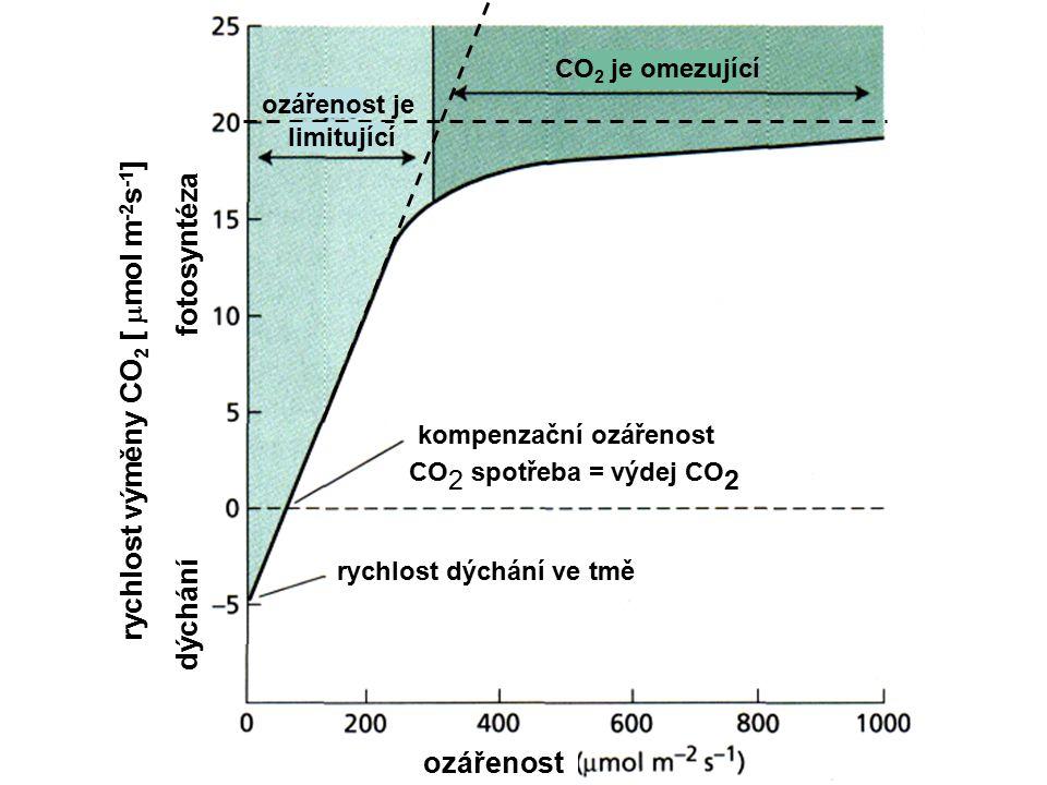 Irradiance Compensation irradiance Absorbed radiation ozářenost rychlost výměny CO 2 [  mol m -2 s -1 ] dýchání fotosyntéza rychlost dýchání ve tmě k