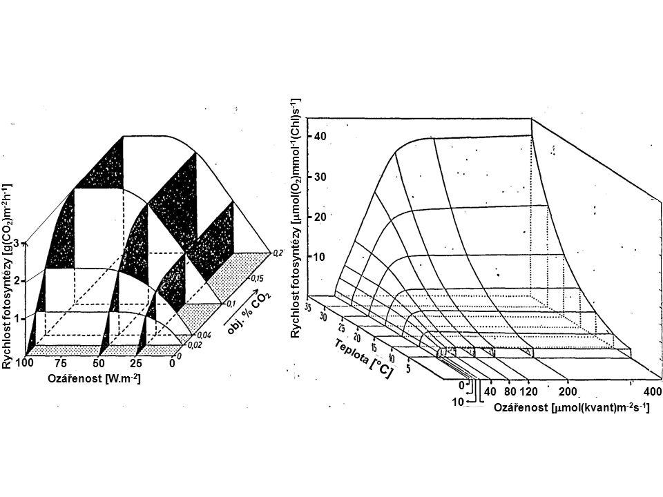 limitace biochemií a difuzí CO 2 strop nasycení saturační ozářenosti limitace fotochemíí (ozářeností) lineární část kompenzační ozářenost (spotřeba CO 2 = výdej CO 2 ) dýchání ve tmě 0 2 4 6 8 10 12 14 16 0 400600 8001000 200 20 15 25 5 10 0 -5 Dýchání Čistá fotosyntéza [  mol (CO 2 ) m -2 s -1 ] Ozářenost [  mol(kvant)m -2 s -1 ] Účinnost přeměny energie  [%] _ (úhrnné fotosyntézy)  Úhrnná (brutto) fotosyntéza [  mol (CO2) m -2 s -1 ] 0 30 5 10 25 15 20 1200 P I k ř i v k a