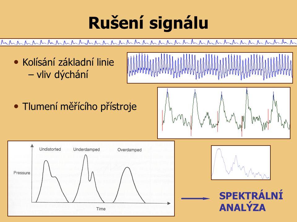 Rušení signálu Kolísání základní linie – vliv dýchání Tlumení měřícího přístroje SPEKTRÁLNÍ ANALÝZA