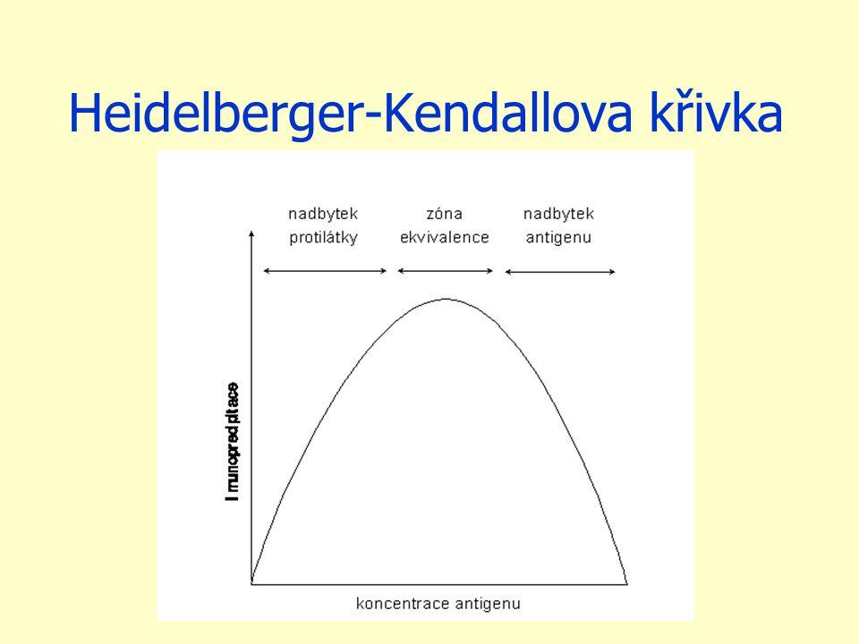 Heidelberger-Kendallova křivka