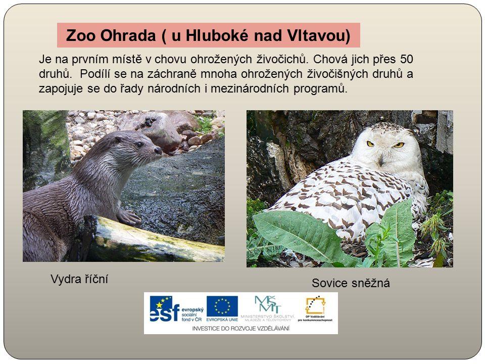 Zoo Ohrada ( u Hluboké nad Vltavou) Je na prvním místě v chovu ohrožených živočichů. Chová jich přes 50 druhů. Podílí se na záchraně mnoha ohrožených