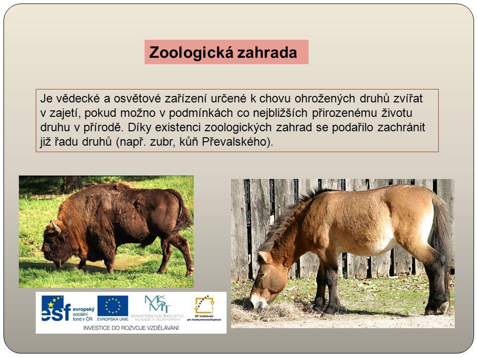 Je vědecké a osvětové zařízení určené k chovu ohrožených druhů zvířat v zajetí, pokud možno v podmínkách co nejbližších přirozenému životu druhu v pří