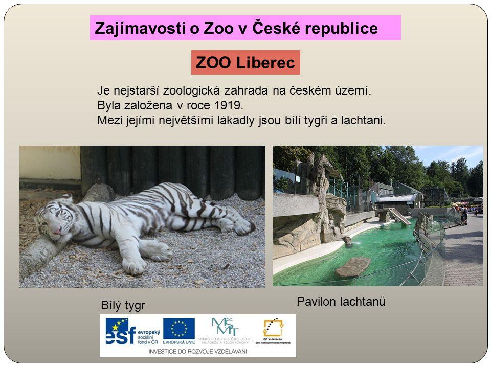 Je nejstarší zoologická zahrada na českém území. Byla založena v roce 1919. Mezi jejími největšími lákadly jsou bílí tygři a lachtani. Zajímavosti o Z