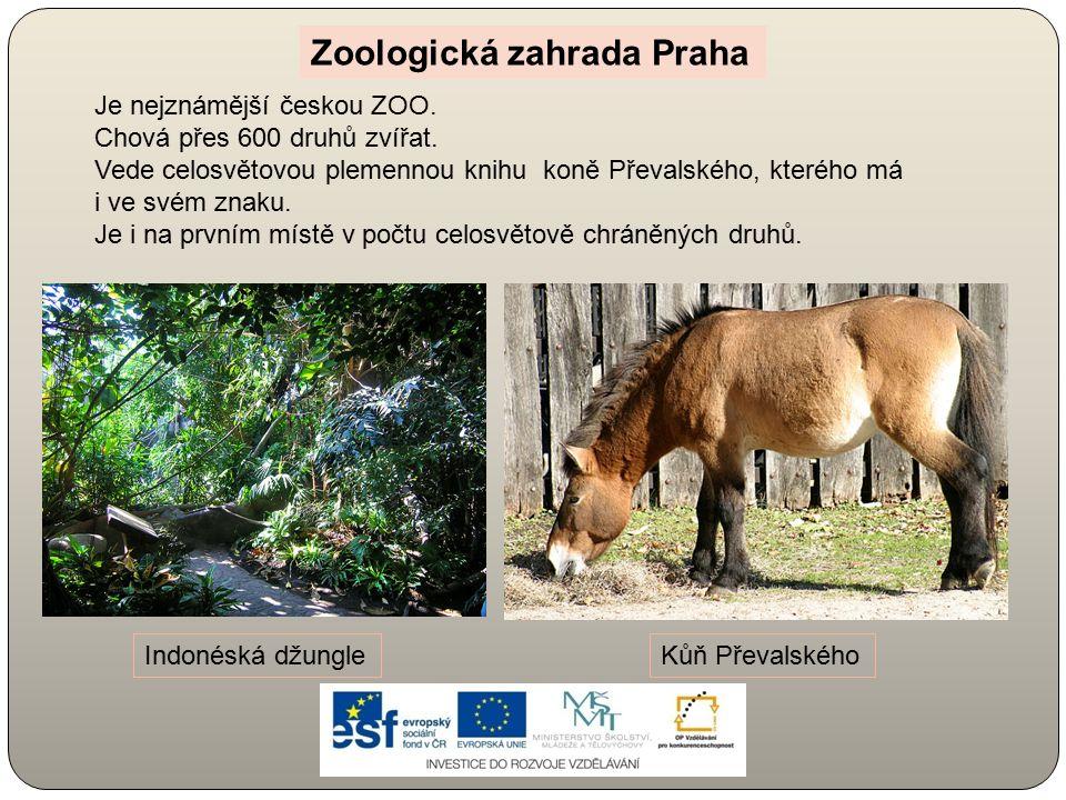 Je nejznámější českou ZOO. Chová přes 600 druhů zvířat. Vede celosvětovou plemennou knihu koně Převalského, kterého má i ve svém znaku. Je i na prvním