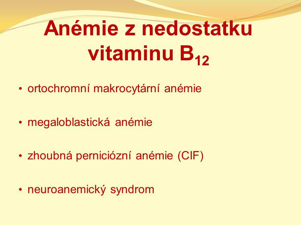Anémie z nedostatku vitaminu B 12 ortochromní makrocytární anémie megaloblastická anémie zhoubná perniciózní anémie (CIF) neuroanemický syndrom