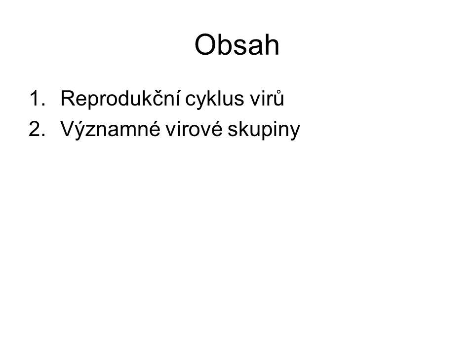 Reprodukční cyklus virů: 1.Adsorpce virionu na povrch buňky a proniknutí dovnitř 2.