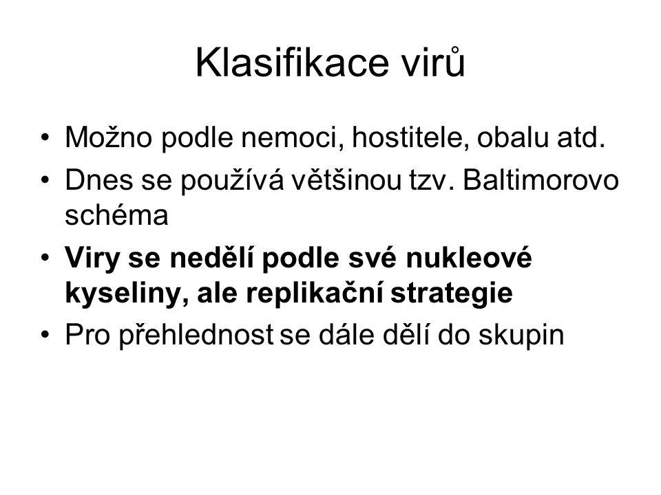 Klasifikace virů Možno podle nemoci, hostitele, obalu atd. Dnes se používá většinou tzv. Baltimorovo schéma Viry se nedělí podle své nukleové kyseliny