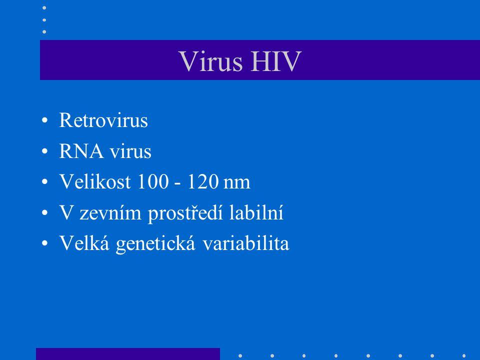 Prevence infekce HIV Omezení expozice výchovné programy kontrola krve a krevních derivátů Zabránění rozvoje infekce vakcíny (zatím ve stadiu výzkumu) omezení přenosu z matky na dítě Zpomalení rozvoje choroby léčba antivirovými preparáty