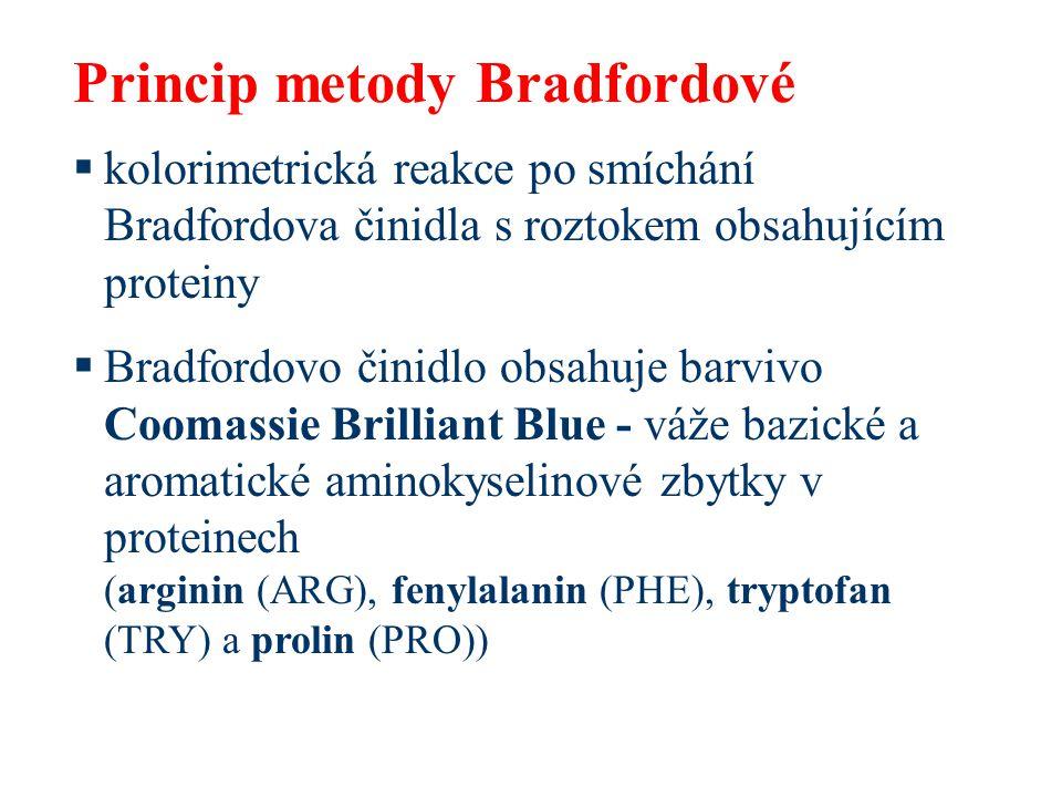 Princip metody Bradfordové  kolorimetrická reakce po smíchání Bradfordova činidla s roztokem obsahujícím proteiny  Bradfordovo činidlo obsahuje barvivo Coomassie Brilliant Blue - váže bazické a aromatické aminokyselinové zbytky v proteinech (arginin (ARG), fenylalanin (PHE), tryptofan (TRY) a prolin (PRO))