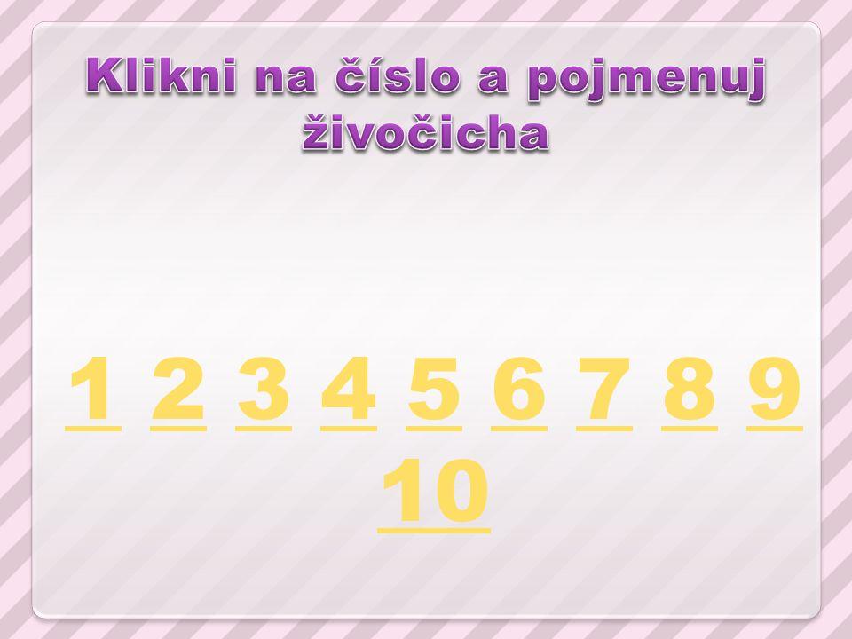 11 2 3 4 5 6 7 8 9 1023456789 10
