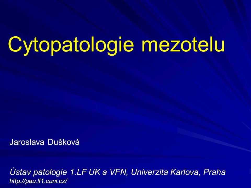 Cytopatologie mezotelu Jaroslava Dušková Ústav patologie 1.LF UK a VFN, Univerzita Karlova, Praha http://pau.lf1.cuni.cz/