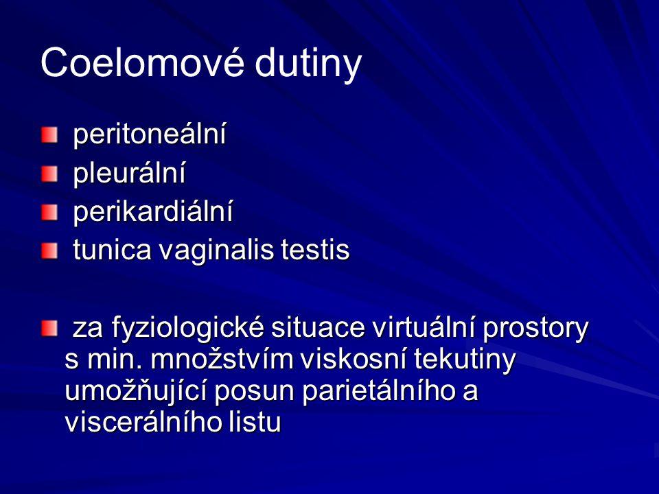 Coelomové dutiny peritoneální peritoneální pleurální pleurální perikardiální perikardiální tunica vaginalis testis tunica vaginalis testis za fyziolog