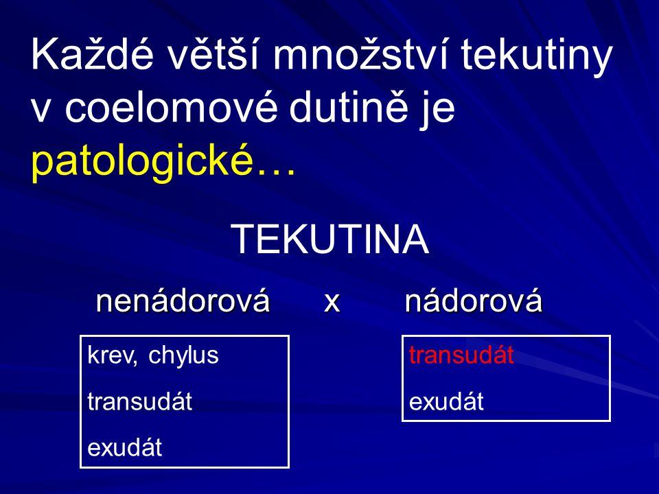 Každé větší množství tekutiny v coelomové dutině je patologické… nenádorová x nádorová nenádorová x nádorová krev, chylus transudát exudát transudát e