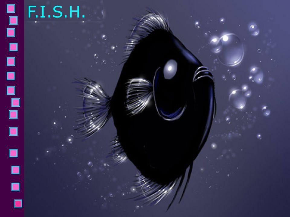 F.I.S.H.