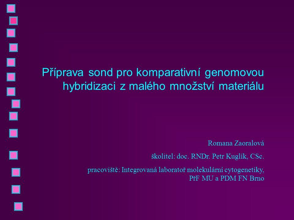 Příprava sond pro komparativní genomovou hybridizaci z malého množství materiálu Romana Zaoralová školitel: doc. RNDr. Petr Kuglík, CSc. pracoviště: I