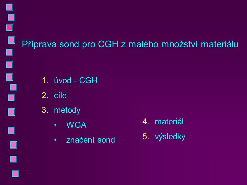 1.úvod - CGH 2.cíle 3.metody WGA značení sond Příprava sond pro CGH z malého množství materiálu 4.materiál 5.výsledky