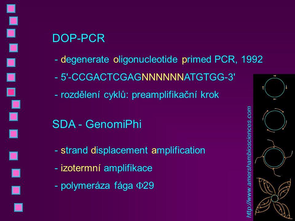 DOP-PCR - degenerate oligonucleotide primed PCR, 1992 - 5'-CCGACTCGAGNNNNNNATGTGG-3' - rozdělení cyklů: preamplifikační krok SDA - GenomiPhi - strand