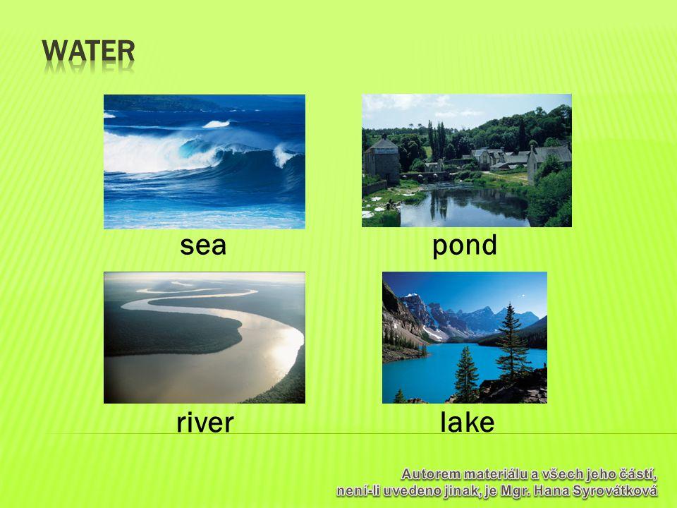 pond river lake sea