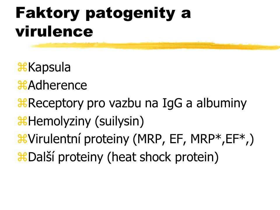 Faktory patogenity a virulence zKapsula zAdherence zReceptory pro vazbu na IgG a albuminy zHemolyziny (suilysin) zVirulentní proteiny (MRP, EF, MRP*,E