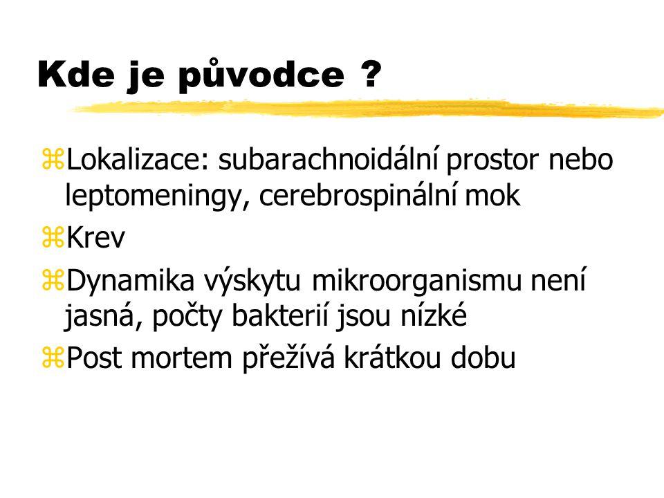 Kde je původce ? zLokalizace: subarachnoidální prostor nebo leptomeningy, cerebrospinální mok zKrev zDynamika výskytu mikroorganismu není jasná, počty