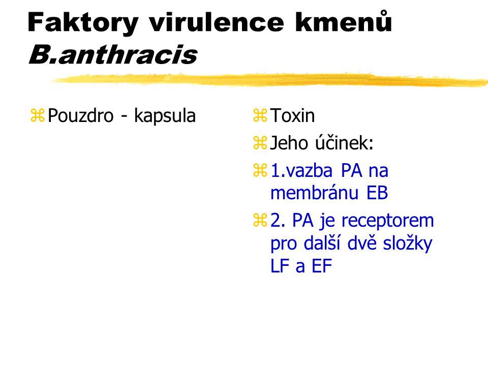 Faktory virulence kmenů B.anthracis zPouzdro - kapsulaz Toxin z Jeho účinek: z 1.vazba PA na membránu EB z 2. PA je receptorem pro další dvě složky LF