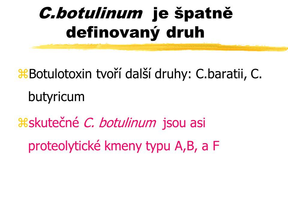 C.botulinum je špatně definovaný druh zBotulotoxin tvoří další druhy: C.baratii, C. butyricum zskutečné C. botulinum jsou asi proteolytické kmeny typu