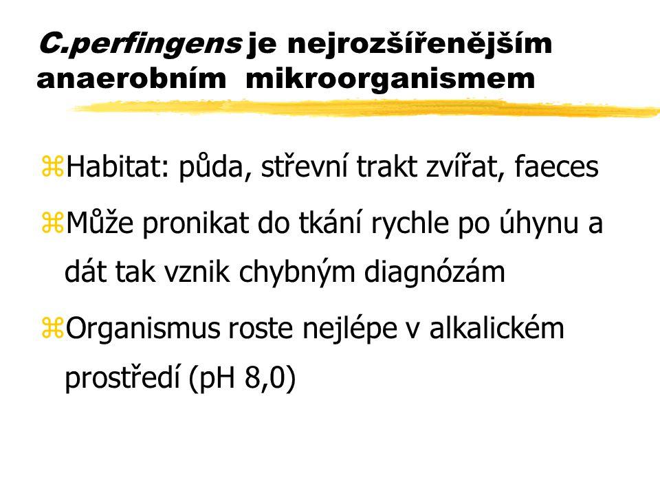 C.perfingens je nejrozšířenějším anaerobním mikroorganismem zHabitat: půda, střevní trakt zvířat, faeces zMůže pronikat do tkání rychle po úhynu a dát