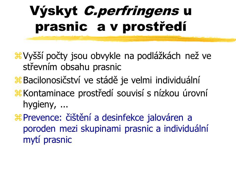 Výskyt C.perfringens u prasnic a v prostředí zVyšší počty jsou obvykle na podlážkách než ve střevním obsahu prasnic zBacilonosičství ve stádě je velmi