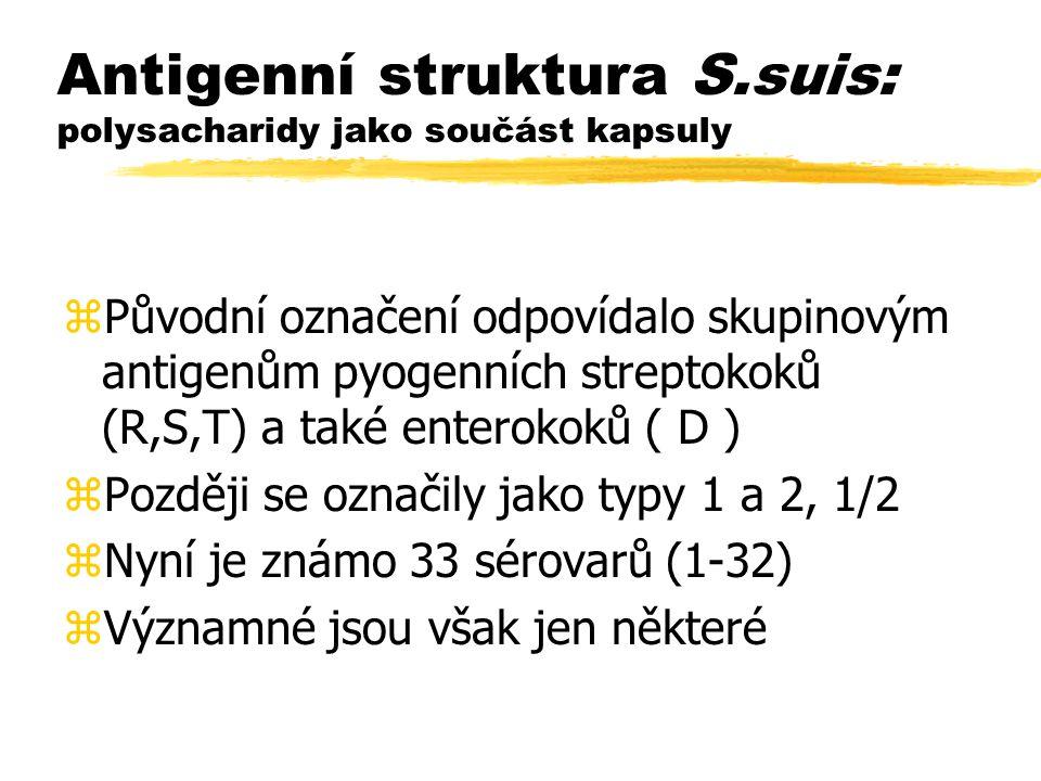 Pravidelné nesporulující G+ tyčinky zRody: zListeria zErysipelothrix zLactobacillus