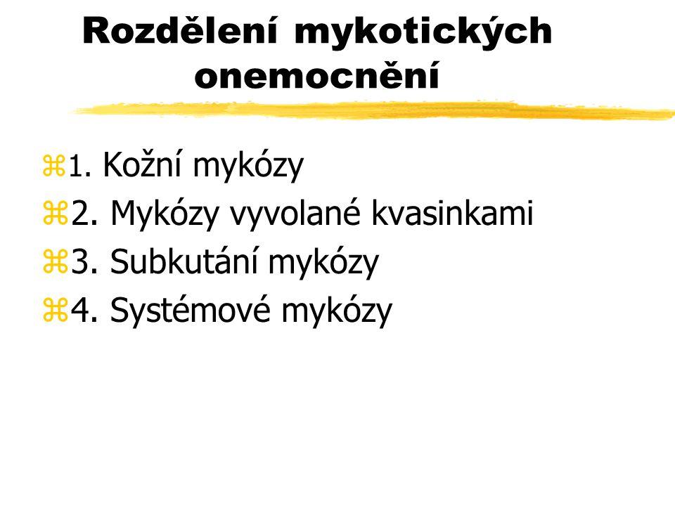 Rozdělení mykotických onemocnění z1. Kožní mykózy z2. Mykózy vyvolané kvasinkami z3. Subkutání mykózy z4. Systémové mykózy