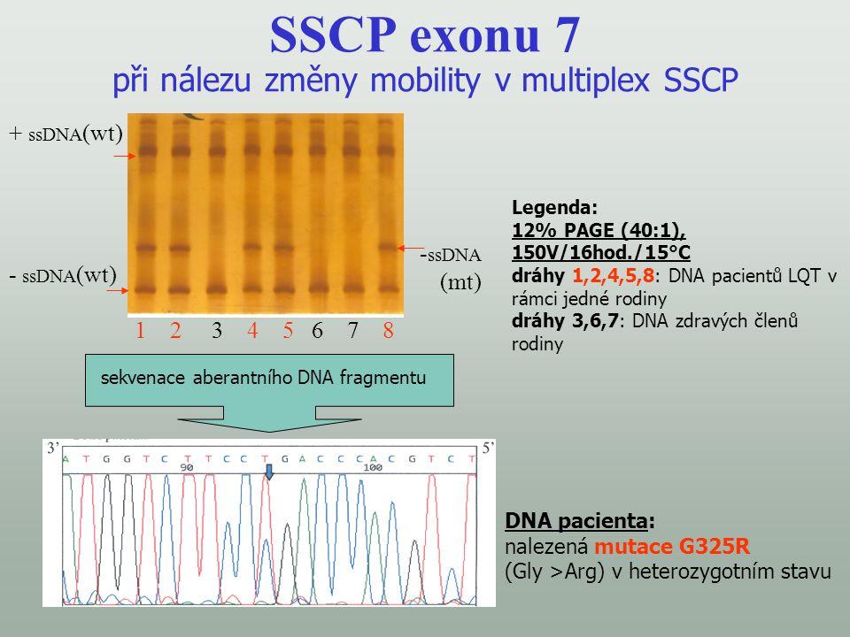 SSCP exonu 7 při nálezu změny mobility v multiplex SSCP Legenda: 12% PAGE (40:1), 150V/16hod./15°C dráhy 1,2,4,5,8: DNA pacientů LQT v rámci jedné rod