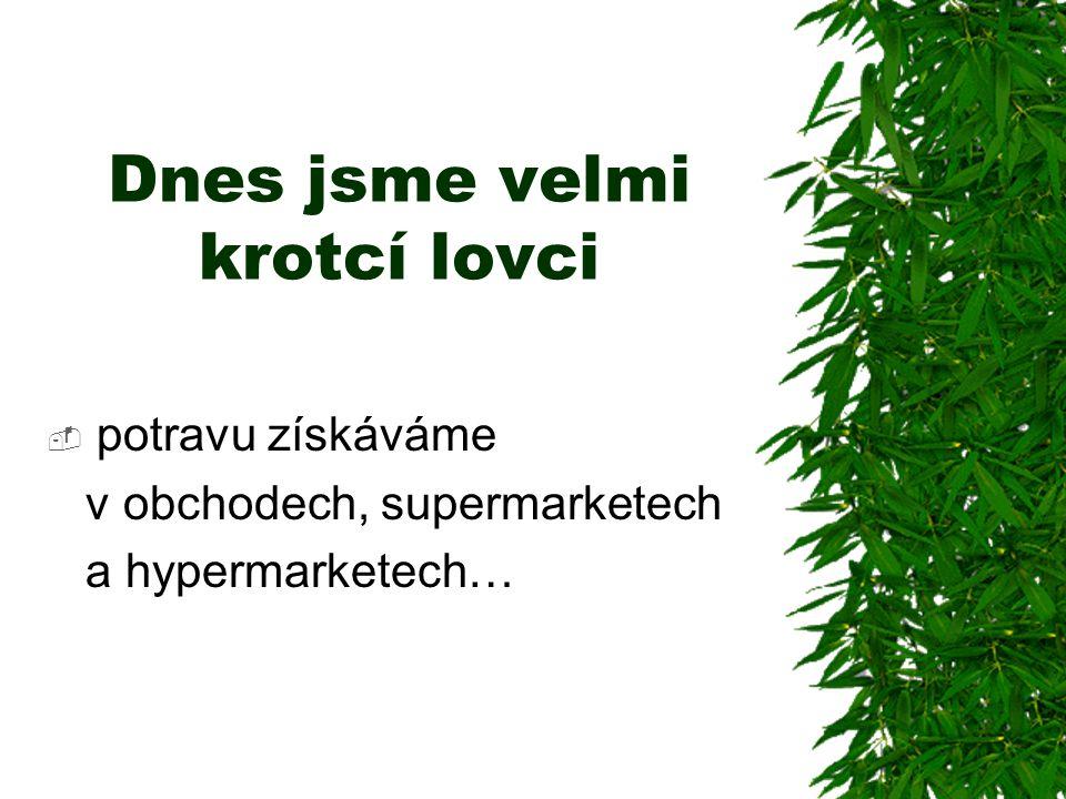 Dnes jsme velmi krotcí lovci  potravu získáváme v obchodech, supermarketech a hypermarketech…