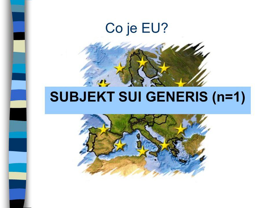 Co je EU SUBJEKT SUI GENERIS (n=1)