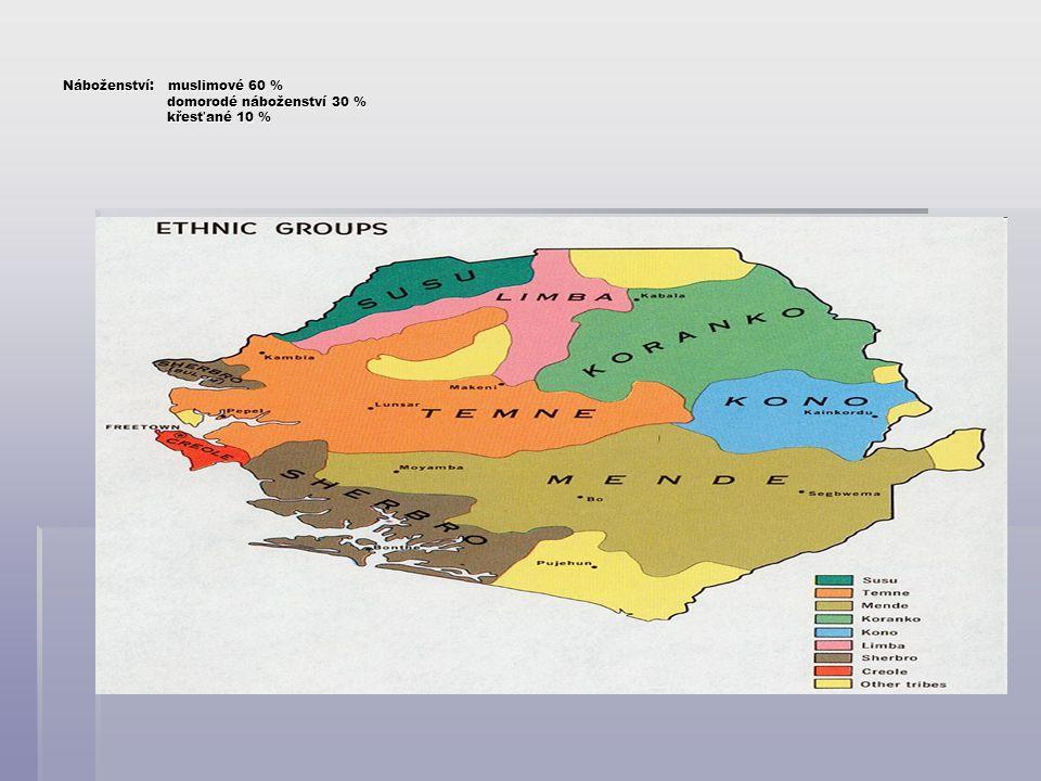 Zdroje:  http://www.afrikaonline.cz http://www.afrikaonline.cz  www.africanwanderings.com www.africanwanderings.com  www.clipartguide.com www.clipartguide.com  www.howtoenjoy.co.uk  www.nationsonline.org www.nationsonline.org  http://www.postreh.com http://www.postreh.com  http://sierra-leone.navajo.cz http://sierra-leone.navajo.cz  www.sl.undp.org www.sl.undp.org  www.tearstosmiles.org  www.un.org www.un.org  www.villageaid.org  http://cs.wikipedia.org http://cs.wikipedia.org  www.wordtravels.com  http://xtree.cz