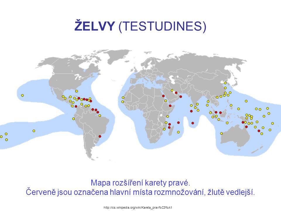 ŽELVY (TESTUDINES) Mapa rozšíření karety pravé.
