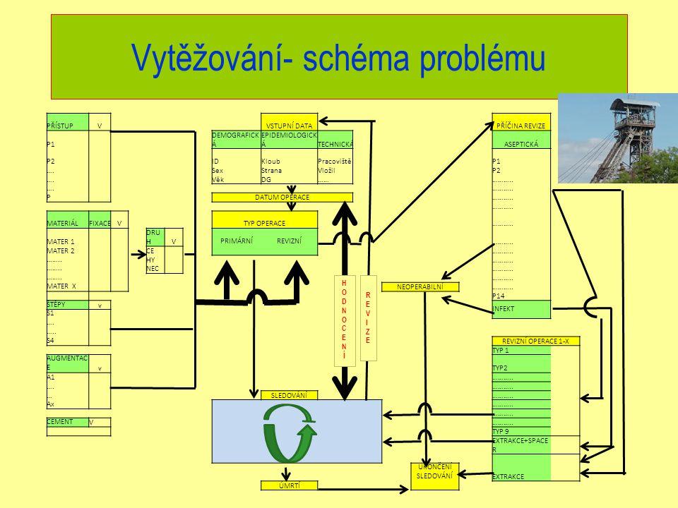 Vytěžování- schéma problému PŘÍSTUPVVSTUPNÍ DATAPŘÍČINA REVIZE P1 DEMOGRAFICK Á EPIDEMIOLOGICK ÁTECHNICKÁASEPTICKÁ P2 IDKloubPracovištěP1 ….