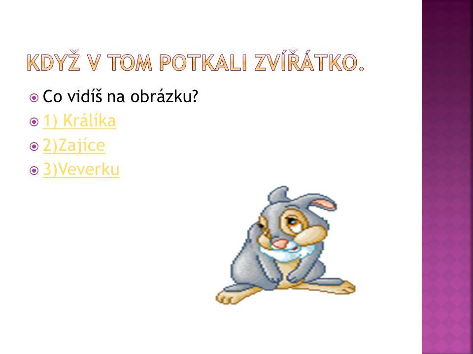  Co vidíš na obrázku?  1) Králíka 1) Králíka  2)Zajíce 2)Zajíce  3)Veverku 3)Veverku
