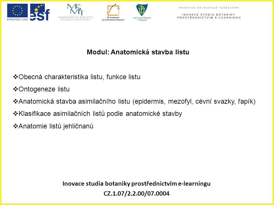 Inovace studia botaniky prostřednictvím e-learningu CZ.1.07/2.2.00/07.0004 Modul: Anatomická stavba listu  Obecná charakteristika listu, funkce listu