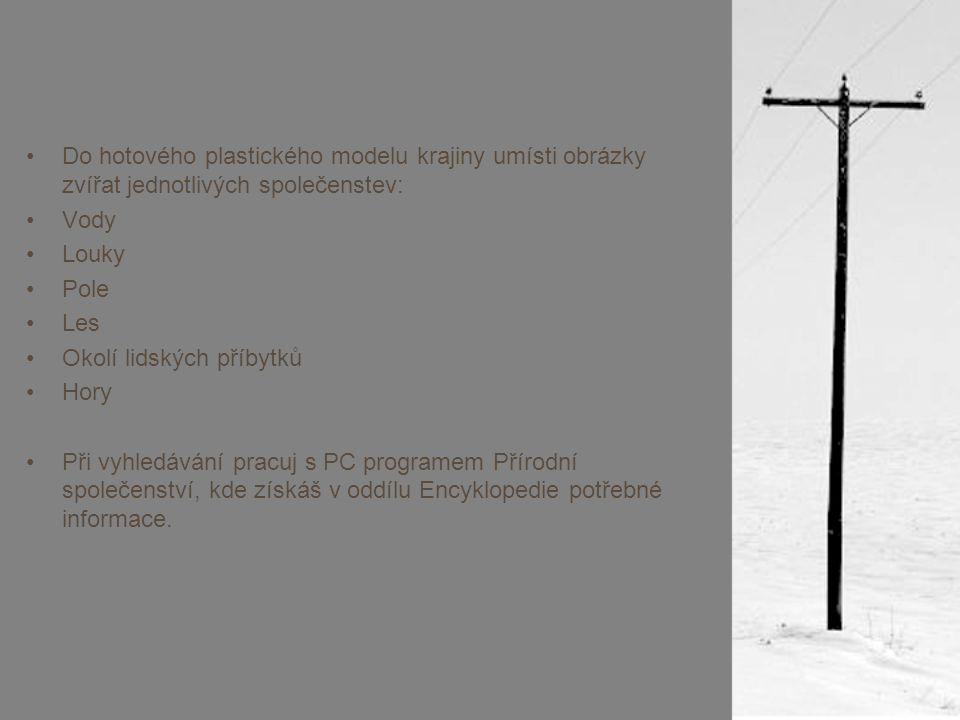 Do hotového plastického modelu krajiny umísti obrázky zvířat jednotlivých společenstev: Vody Louky Pole Les Okolí lidských příbytků Hory Při vyhledávání pracuj s PC programem Přírodní společenství, kde získáš v oddílu Encyklopedie potřebné informace.