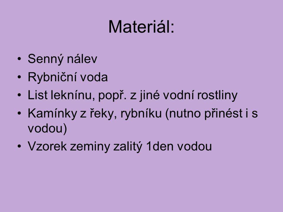 Materiál: Senný nálev Rybniční voda List leknínu, popř.
