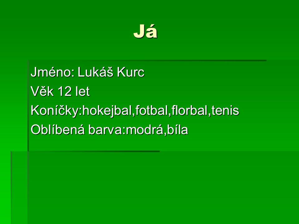 Já Já Jméno: Lukáš Kurc Věk 12 let Koníčky:hokejbal,fotbal,florbal,tenis Oblíbená barva:modrá,bíla