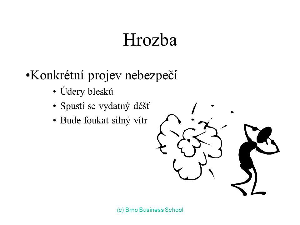 Hrozba Konkrétní projev nebezpečí Údery blesků Spustí se vydatný déšť Bude foukat silný vítr (c) Brno Business School