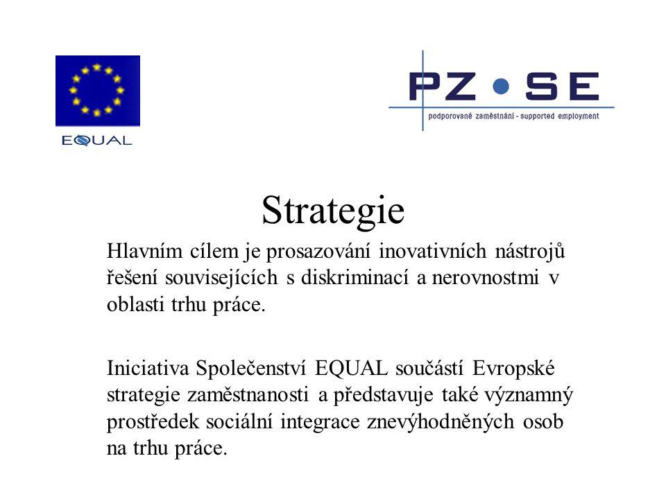 Strategie Hlavním cílem je prosazování inovativních nástrojů řešení souvisejících s diskriminací a nerovnostmi v oblasti trhu práce. Iniciativa Společ