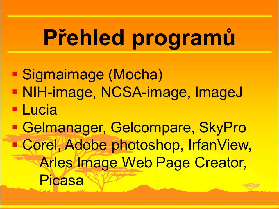 Přehled programů  Sigmaimage (Mocha)  NIH-image, NCSA-image, ImageJ  Lucia  Gelmanager, Gelcompare, SkyPro  Corel, Adobe photoshop, IrfanView, Ar